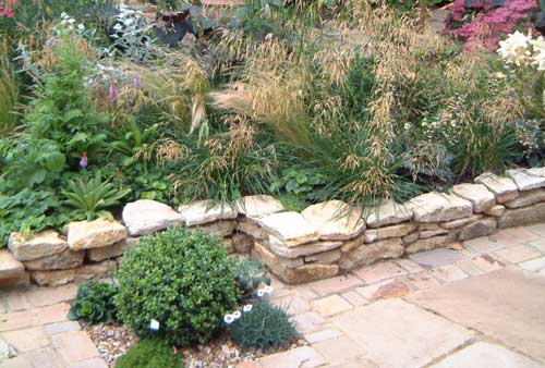 Northampton Garden Planting Design