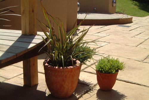 Contempory Garden Design Ideas