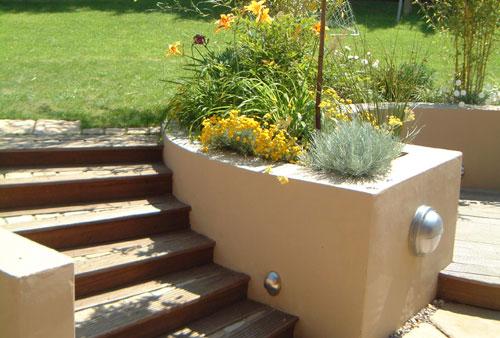 Contempory Garden Planting Ideas