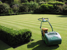 7. Garden Maintenance
