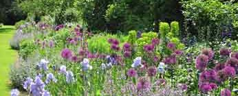 6. Planting Service